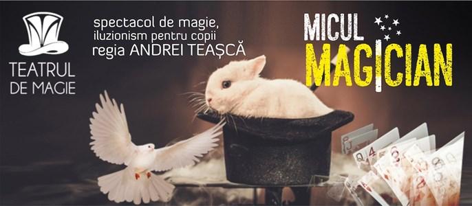 Micul Magician - Teatrul de Magie