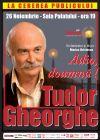 Bilete la Tudor Gheorghe - Adio, doamna! - 26 Nov 2015