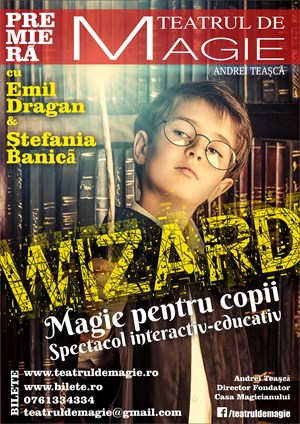 Wizard Story - Magic Show