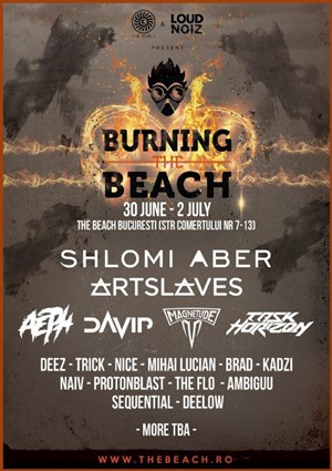 Burning the beach 2017