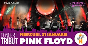 Pink Floyd Concert - All the hits LIVE with Pink Sonic