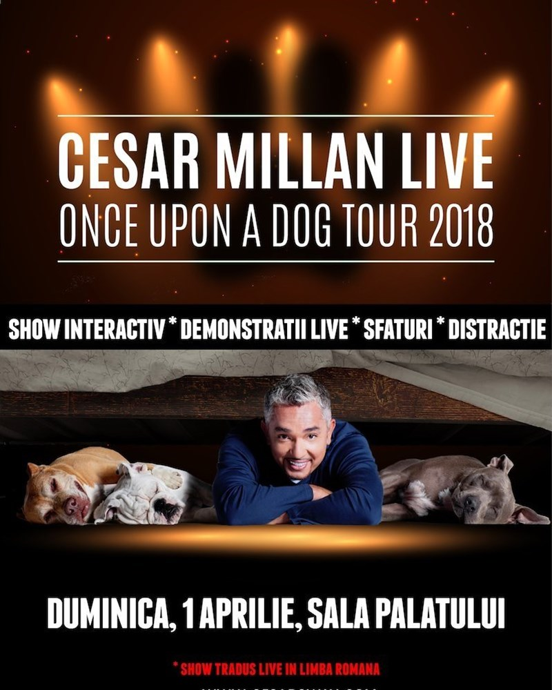 Cesar Millan Live - Once Upon a Dog